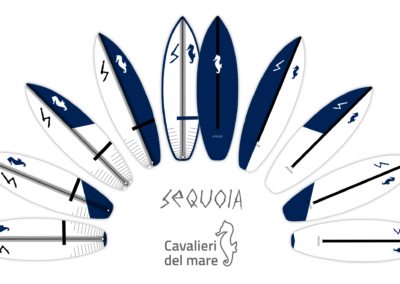 Sequoia Surfboards