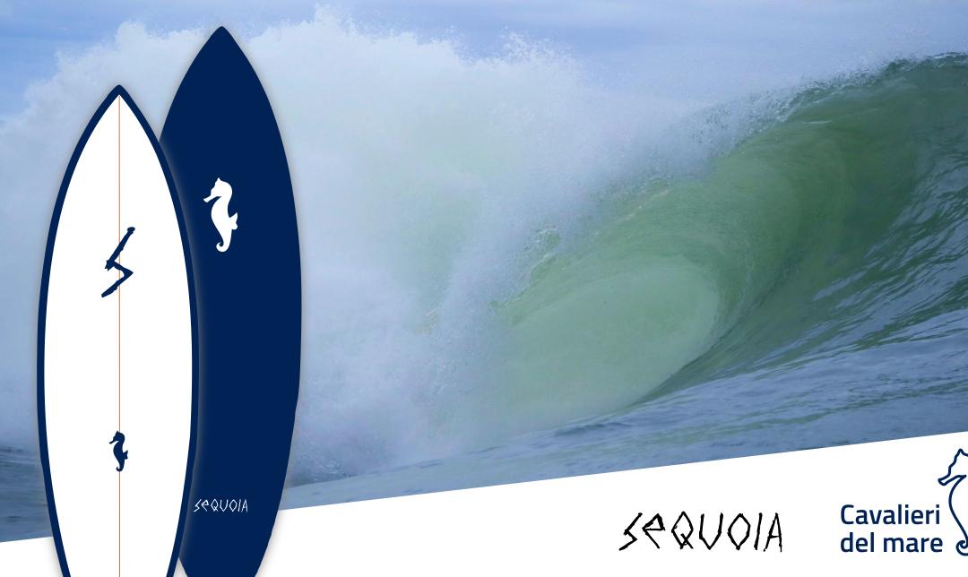 Una tavola da surf per proteggere gli oceani
